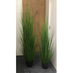 Grass mit Topf