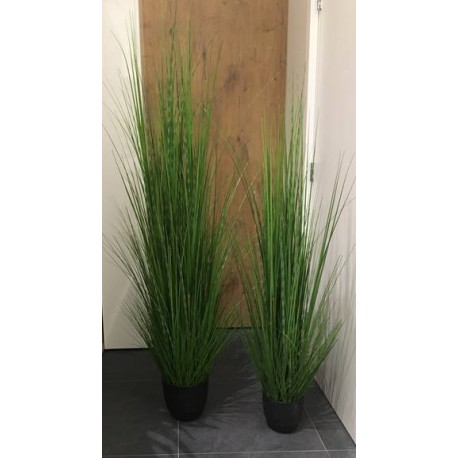 Grass mit Topf 150cm