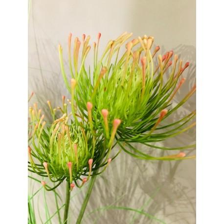 Nadelkissen Grass