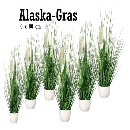 Alaska Gras
